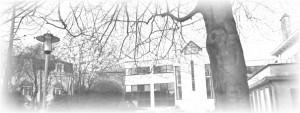 Fiduciaire gestion Temselaan 3b 1853 Strombeek-Bever Contacts